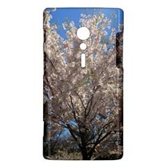Cherry Blossoms Tree Sony Xperia ion Hardshell Case