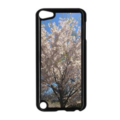 Cherry Blossoms Tree Apple Ipod Touch 5 Case (black) by DmitrysTravels