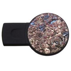 Sakura 2gb Usb Flash Drive (round) by DmitrysTravels