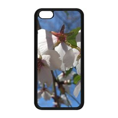 Cherry Blossoms Apple Iphone 5c Seamless Case (black) by DmitrysTravels
