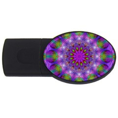 Rainbow At Dusk, Abstract Star Of Light 4GB USB Flash Drive (Oval) by DianeClancy