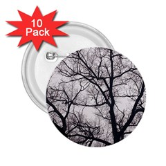 Tree 2 25  Button (10 Pack) by DmitrysTravels