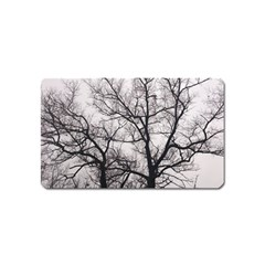 Tree Magnet (Name Card) by DmitrysTravels