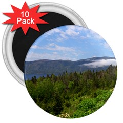Newfoundland 3  Button Magnet (10 Pack) by DmitrysTravels