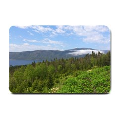 Newfoundland Small Door Mat by DmitrysTravels