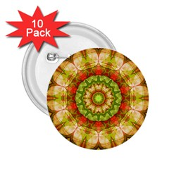Red Green Apples Mandala 2 25  Button (10 Pack) by Zandiepants
