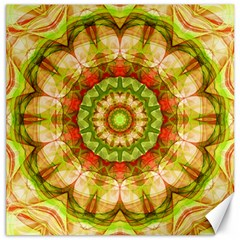 Red Green Apples Mandala Canvas 20  x 20  (Unframed) by Zandiepants