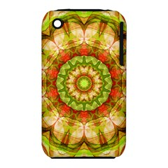 Red Green Apples Mandala Apple Iphone 3g/3gs Hardshell Case (pc+silicone) by Zandiepants