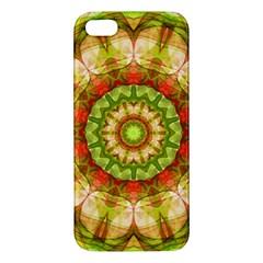 Red Green Apples Mandala Apple Iphone 5 Premium Hardshell Case by Zandiepants