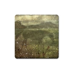 Flora And Fauna Dreamy Collage Magnet (square) by dflcprints