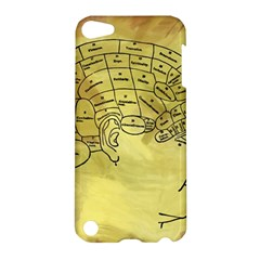 Brain Map Apple Ipod Touch 5 Hardshell Case by StuffOrSomething