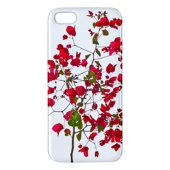 Red Petals Apple Iphone 5 Premium Hardshell Case by dflcprints