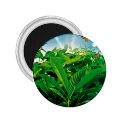 Nature Day 2 25  Button Magnet by dflcprints