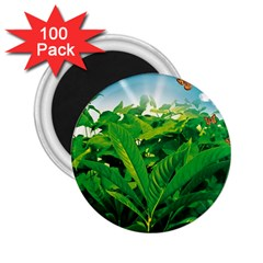 Nature Day 2 25  Button Magnet (100 Pack) by dflcprints