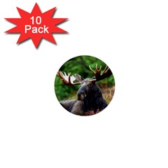 Majestic Moose 1  Mini Button (10 Pack) by StuffOrSomething