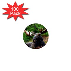 Majestic Moose 1  Mini Button (100 Pack) by StuffOrSomething