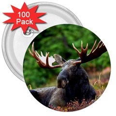 Majestic Moose 3  Button (100 Pack) by StuffOrSomething