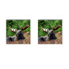 Majestic Moose Cufflinks (square) by StuffOrSomething