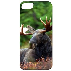 Majestic Moose Apple Iphone 5 Classic Hardshell Case by StuffOrSomething