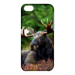 Majestic Moose Apple Iphone 5c Hardshell Case by StuffOrSomething