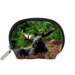Majestic Moose Accessories Pouch (small) by StuffOrSomething