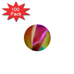 Rainbow Roses 16 1  Mini Button (100 Pack) by bloomingvinedesign