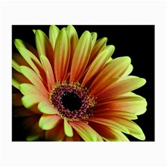 Yellow Orange Gerbera Daisy Glasses Cloth (small, Two Sided) by bloomingvinedesign