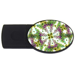 Neo Noveau Style Background Pattern 2GB USB Flash Drive (Oval) by dflcprints