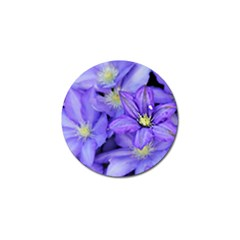 Purple Wildflowers For Fms Golf Ball Marker 4 Pack by FunWithFibro