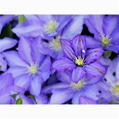 Purple Wildflowers For Fms Canvas 12  X 16  (unframed) by FunWithFibro