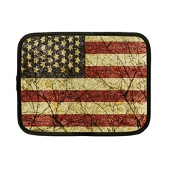Vinatge American Roots Netbook Sleeve (small) by dflcprints