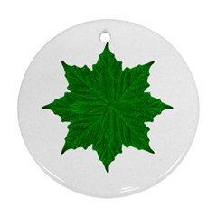Decorative Ornament Isolated Plants Round Ornament by dflcprints