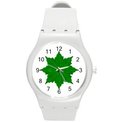 Decorative Ornament Isolated Plants Plastic Sport Watch (medium) by dflcprints