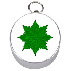 Decorative Ornament Isolated Plants Silver Compass by dflcprints