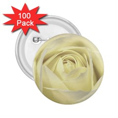 Cream Rose 2 25  Button (100 Pack) by Colorfulart23