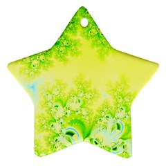 Sunny Spring Frost Fractal Star Ornament (two Sides) by Artist4God