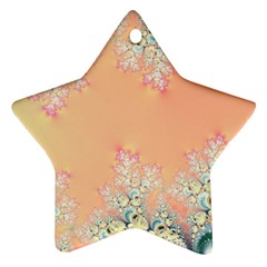 Peach Spring Frost On Flowers Fractal Star Ornament by Artist4God