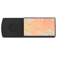 Peach Spring Frost On Flowers Fractal 2GB USB Flash Drive (Rectangle) by Artist4God