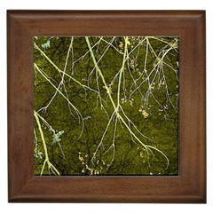 Wild Nature Collage Print Framed Ceramic Tile by dflcprints