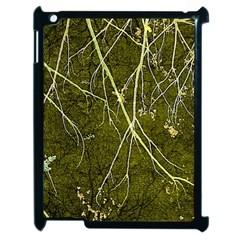 Wild Nature Collage Print Apple Ipad 2 Case (black) by dflcprints
