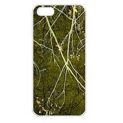 Wild Nature Collage Print Apple Iphone 5 Seamless Case (white) by dflcprints