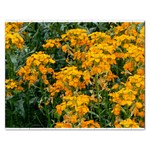 Flowers Jigsaw Puzzle (Rectangular)