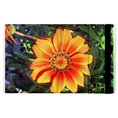 Flower In A Parking Lot Apple Ipad 2 Flip Case by sirhowardlee