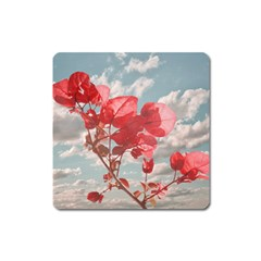 Flowers In The Sky Magnet (square) by dflcprints