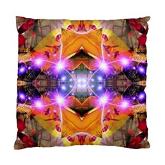 Abstract Flower Cushion Case (two Sided)  by icarusismartdesigns