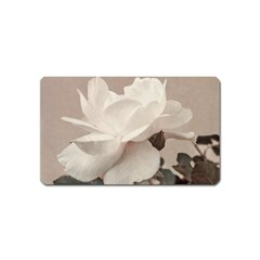 White Rose Vintage Style Photo In Ocher Colors Magnet (name Card) by dflcprints