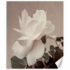 White Rose Vintage Style Photo In Ocher Colors Canvas 8  X 10  (unframed) by dflcprints