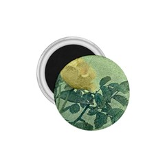 Yellow Rose Vintage Style  1 75  Button Magnet by dflcprints