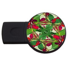 Floral Print Colorful Pattern 4gb Usb Flash Drive (round) by dflcprints