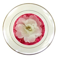 White Rose With Pink Leaves Around  Porcelain Display Plate by dflcprints